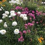 canteros de flores