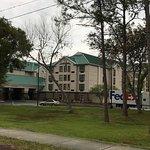 Foto di Hampton Inn & Suites Tampa - North