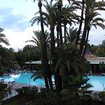 Beautiful gardens surround the pool
