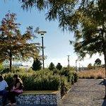 Photo of Birmingham's Railroad Park
