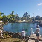 Foto de Cayman Turtle Centre: Island Wildlife Encounter