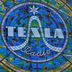 Tesla Window.