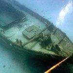 Diving at the Carthaginian wreck.