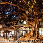 Restaurante Aduana