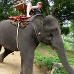 Elephant trekking - Taweechai Elephant Camp - Thailand (06/Apr/17).