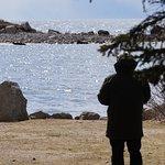 View near beach
