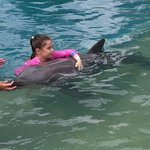 Mia swimming and hugging a dolphin at Dolphine Marine Magic Coffs Harbour