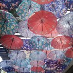 this entrance of umbrellas was a welcome sight