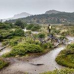 Trekking desde Campamento Poinceton a Laguna Capri, con lluvia