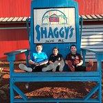 Photo de Shaggy's