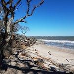 Approach to Driftwood Beach