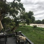 Photo de Simbavati River Lodge