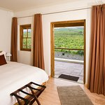 Beautiful views from our vineyard rooms.