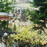 Photo de Greenspaces B&B Munnar