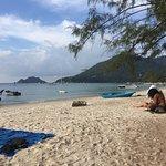Tropical Palm Resort Foto