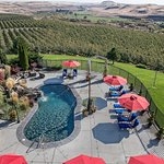 Beautiful natural looking pool with water falls are a featured aspect of Cameo Heights Mansion.