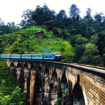 Ella Train travel