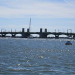 Bridge of Lions St. Augustine