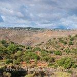 Núcleos de sobreiros na Reserva da Faia Brava