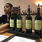 Excellent wine tasting and such elegant wines