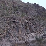 view of entire petroglyph wall
