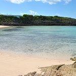 Foto de The Cove Eleuthera