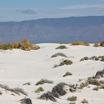 Photo of White Sands National Monument