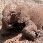 Playing in the mud is more than just fun!