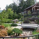 "The ""Plants of Promise"" garden showcases regional landscaping plants."