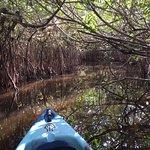 Foto de Shurr Adventures Everglades
