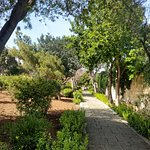Photo of San Anton Gardens