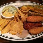 Sampler Platter. Fried zucchini, chicken fingers, spinach/artichoke dip.