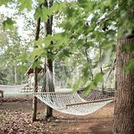 Relax in one of our hammocks