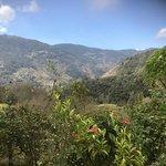 Foto de Savegre Hotel, Natural Reserve & Spa