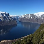 Photo of Fjord Tours
