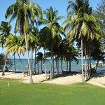 Фотография Pelican Beach - Dangriga