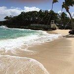Foto de Luxury Bahia Principe Cayo Levantado