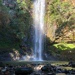 Foto de Wailua River Guides