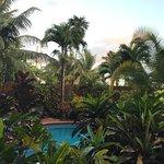 The Palms Oceanfront Suites Foto