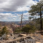 Foto Bear Mountain Trail