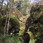 Foto de Wairere Boulders