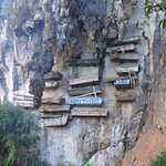 Hanging coffins you can see from the viewpoint