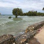 White Paradise Zanzibar รูปภาพ