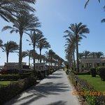 Photo of Coral Sea Holiday Village
