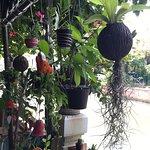 Lamphu Tree House Photo