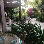 Great resort on Ambergris Caye Belize
