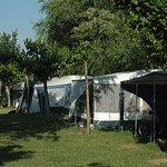 Zona parcelas Camping Mas Nou