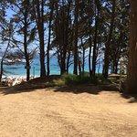 Photo of Playa Canelo