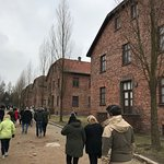 Photo of Discover Cracow Tours