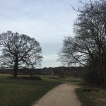 The Beautiful Hampstead Heath